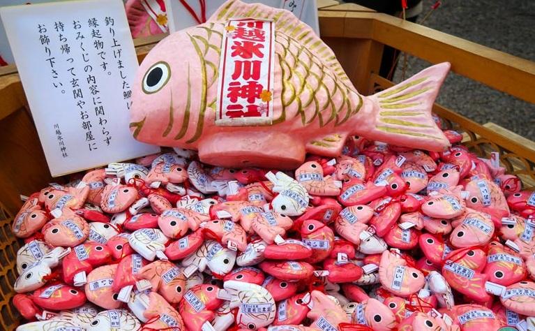 Memancing Ikan Tai merah muda Agar Mudah Jodoh