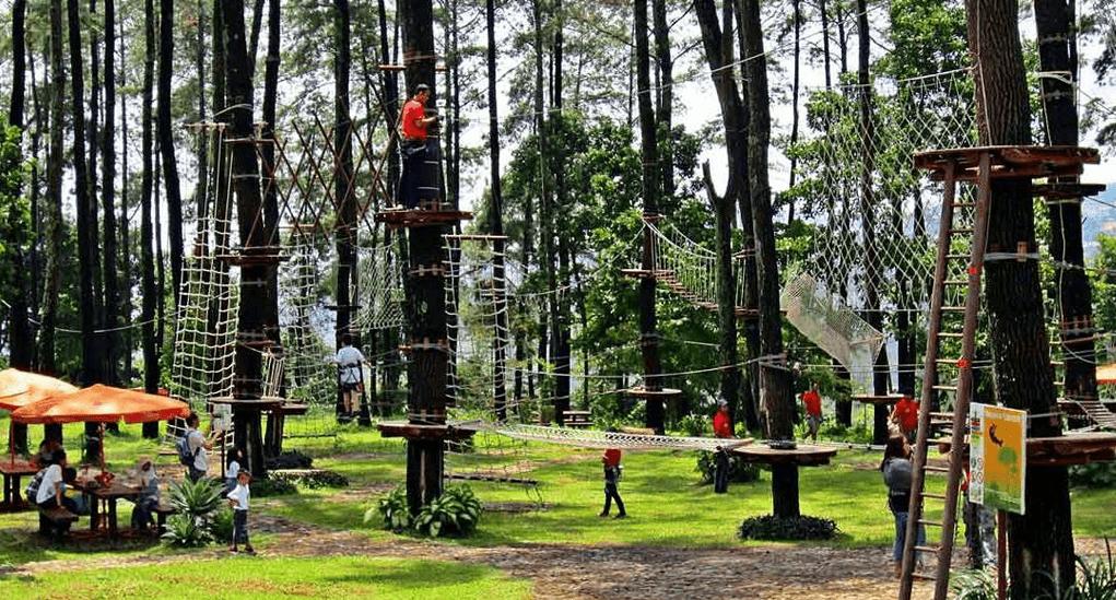 Wisata Bandung Treetop Adventure Park