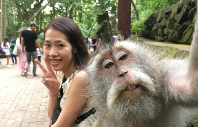 Wisata Hutan Monyet Ubud
