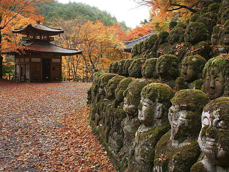 Kunjungi Kuil Otagi Nenbutsu-ji