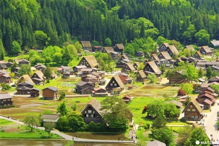 Pedesaan Negeri Dongeng Shirakawago