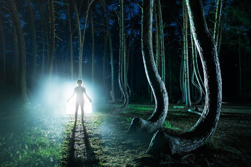 Wisata Tersembunyi Hutan Bengkok di Polandia