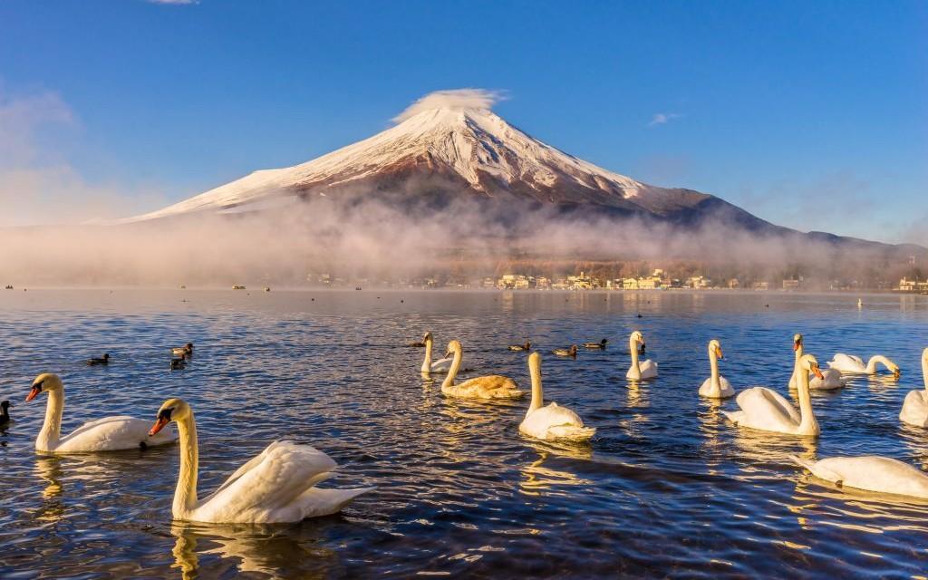 12 Wisata Keajaiban Alam Jepang Dengan Pemandangan Surgawi