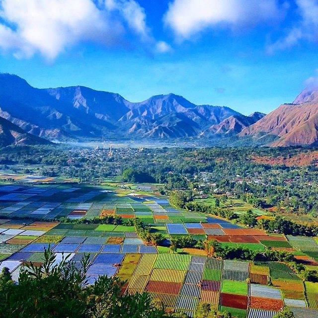 Keindahan Bukit Pergasingan Lombok