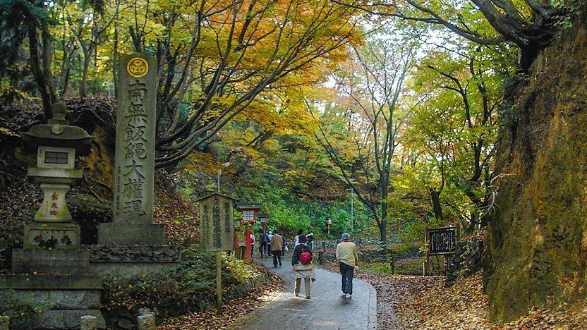 Takao Natural Zoo