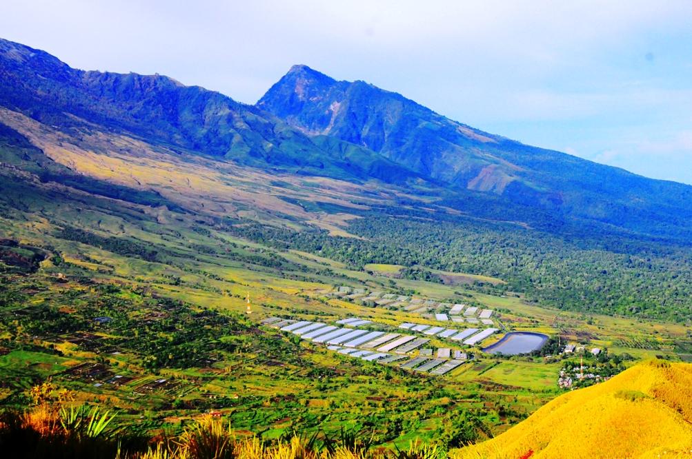 Wisata Bukit Pergasingan Lombok